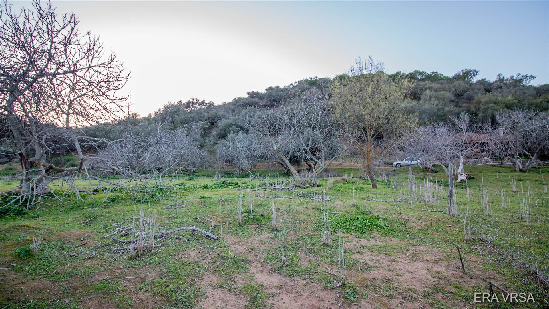 Real Estate para comprar - Algarve, , Alcoutim